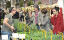 5-6 March, Gardening Tradefair Modena Fiere 2016